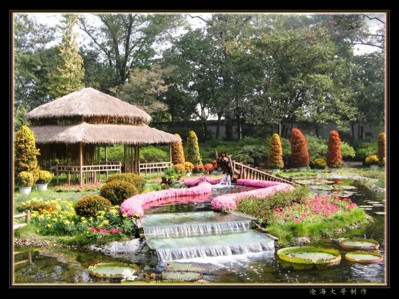 鲜花的乐园-装扮动物大联欢 - ming - 星晨乐园