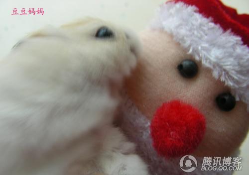 豆豆妈妈与圣诞老人的故事