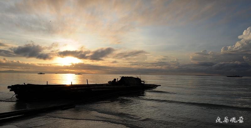 太阳总会升起 - 西樱 - 走马观景
