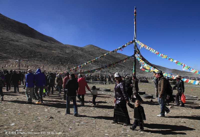 追梦阿里___全藏最盛大的萨噶达娃节 - 西樱 - 走马观景