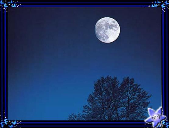好想陪你看月亮 - 真水无香  - 香格里拉 花开的地方