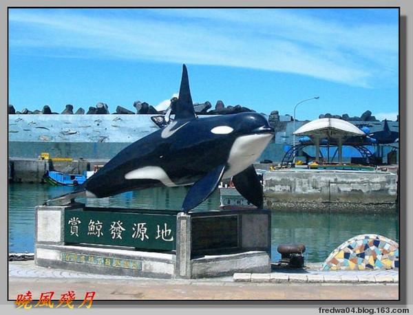 寶島後花園(二)鯨生鯨世 - 曉風殘月 - 曉風殘月