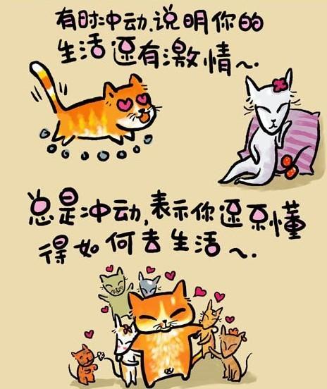 猫言猫语(超可爱、超搞笑) - yeejame - yeejame 的博客
