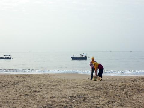 海边纪事 (二)  - daikang390505 - 我的博客