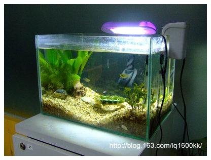 新翻的小鱼缸 - lq - LQ的博客