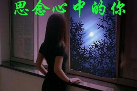 2011年11月14日 - 萍水相逢 - 宁静港湾