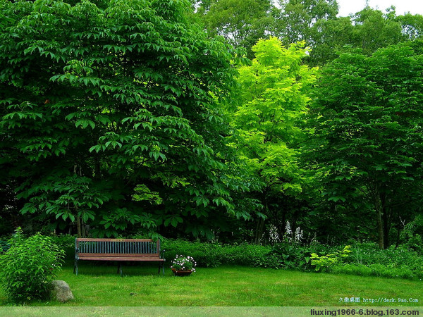 美不胜收的动态风景桌面【大图】 - ☆ㄣ當紅仯籹╬ - ㄣ當紅仯籹☆