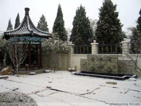 第一场雪 - 书琴 - 书琴的客厅