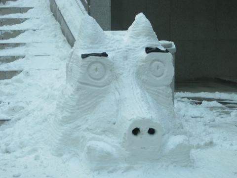 堆雪人 - zmyecho - 阿左的泡菜生活