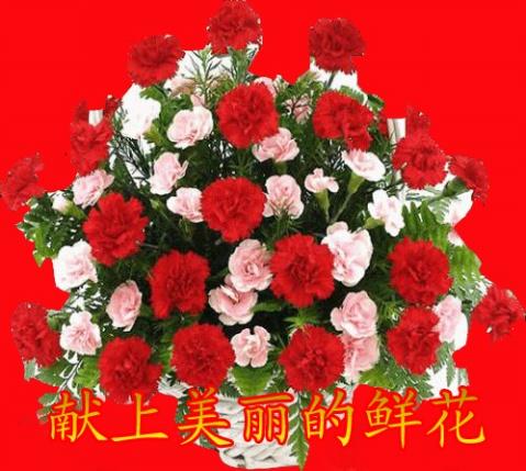 祝(紫雾)生日快乐 - 天爱 - 心灵舞台
