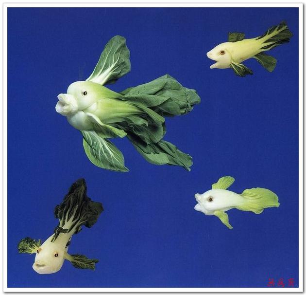 这样的创意真让人佩服得五体投地!【组图】 - 悠悠的鱼儿 - 悠悠鱼儿的空间