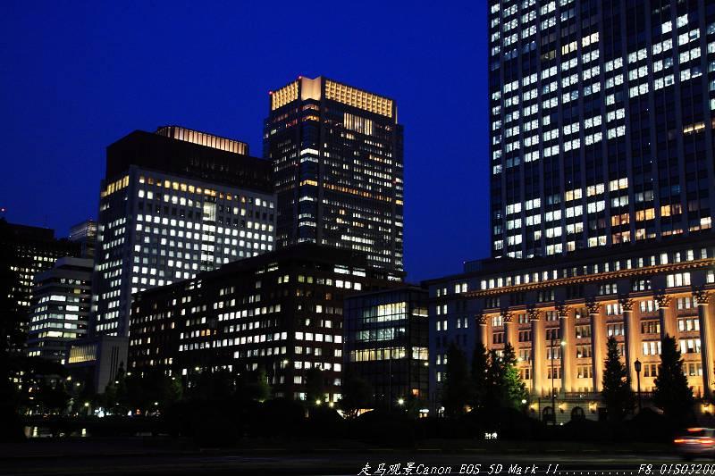 赶赴一场秋天的盛宴____夜游东京 - 西樱 - 走马观景