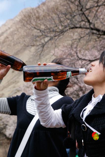 雅鲁藏布江边桃花林中的浪漫烧烤 - 阿文 - tibet52的博客