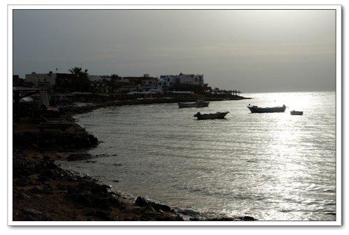 红海潜水日志-埃及《十四》 - Y哥。尘缘 - 心的漂泊-Y哥37国行