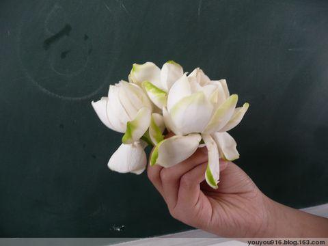 三朵栀子花