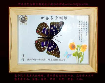 加工定做广告礼品 - 蝴蝶 - 丁来工艺品厂