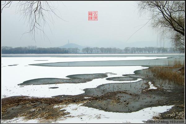 09年春的瑞雪(原) - 五味杂陈 - 我的人生驿站