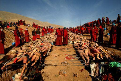 一般新闻单幅二等奖-西藏僧侣为灾民火化。