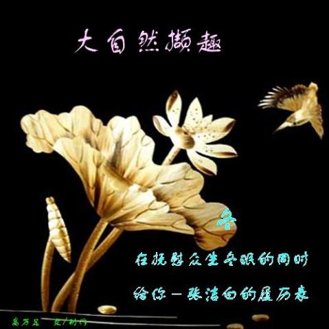 大自然撷趣(原创)   - 永恒苦旅 - 永恒苦旅【原创】