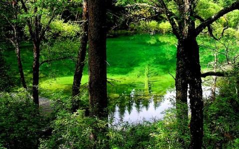 据说是仙女沐浴的地方-天堂美景 神仙池掠影图片