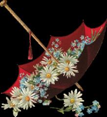 爱那个真实的自己 - 春暖花会开 - 春暖花会开的BLOG