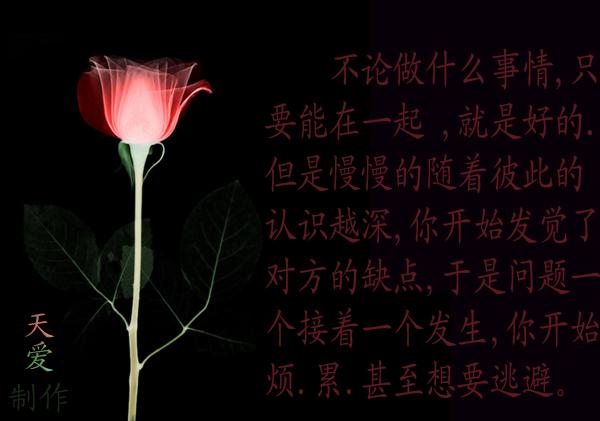 爱情就像捡石头 - 天爱 - 心灵舞台