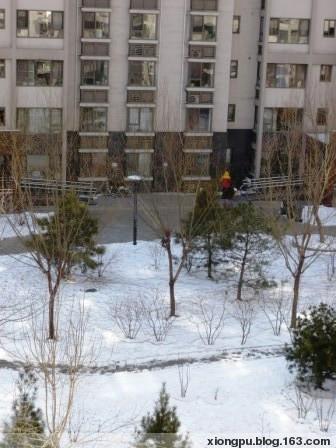 雨水这天的雪 - BERRYTREE - 熊璞的博客