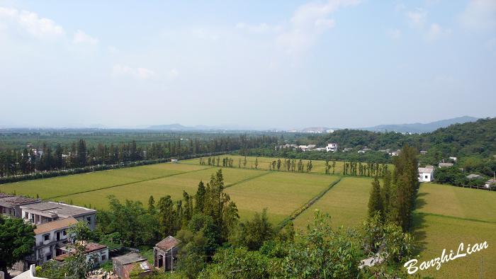 【原创】访莲江村之一 第一印象 - 半支莲 -