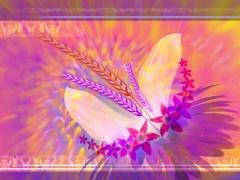 引用 【素材】梦幻花朵Ⅰ - 百合 - 百合港的博客