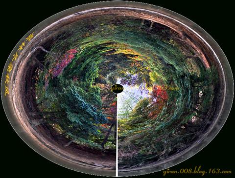 (原作摄影组图)秋天万花筒--枫 - 轻撷寂寞独酌 - 寻梦园