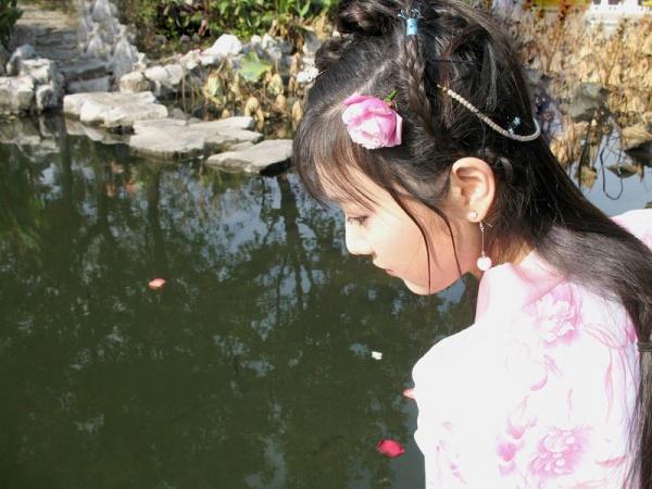 【鹿湖原创】七绝一首 - 鹿湖仙子 - 鹿湖仙苑