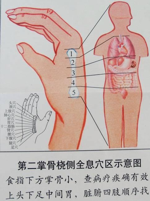 125.按摩拇指食指与小指帮助通便 - 爱运动的人 - 蔡静