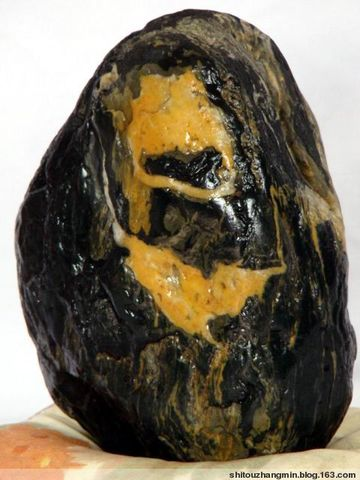 2009年2月8日 - 石头张 - 石头张的奇石园