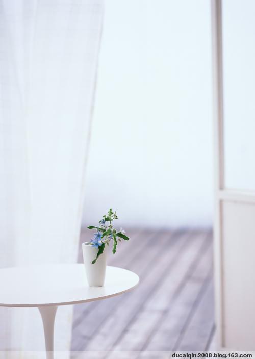 (原创)简单、淡雅的美丽 - 蓝天白云 - 蓝天白云的博客