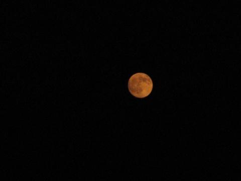 我们这里所看到的中秋月(原创) - 人在旅途 - 净土的博客