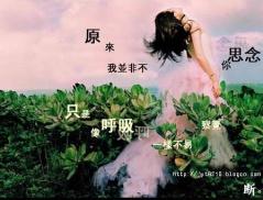 抹不去的记忆 - 一个人的胡杨林  - 往事如风