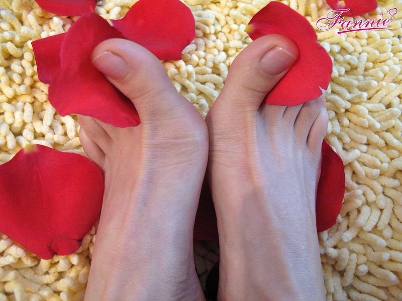 【元宵节快乐】双影共分红—并蒂莲 《预览图》 - 喜欢光脚丫的夏天 - 喜欢光脚丫的夏天