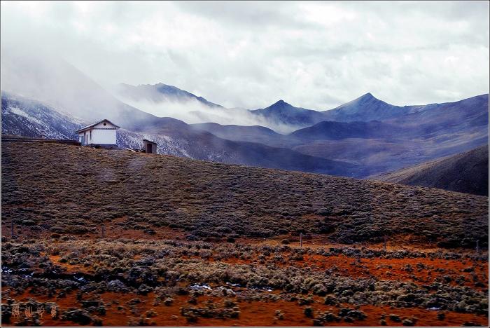 [原创]折多山——路上风景 - 迁徙的鸟 - 迁徙鸟儿的湿地