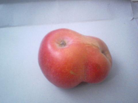 见过这样的苹果吗?【原创】 - 我在跑步 - 我在跑步的博客
