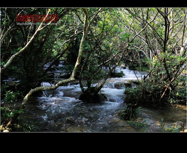 小七孔(水上森林) - 风景这边独好 -     风 景 这 边 独 好