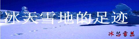 寻找自由的鸟(原创) - 冰芯雪蕊 - 冰天雪地的足迹