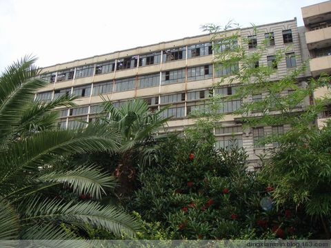 在这外白渡桥、公济医院   下 - dingxianmin - dingxianmin的博客