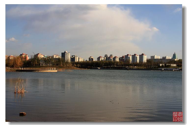【原创】奥林匹克森林公园(二) - 赛螃蟹 - 赛螃蟹的家