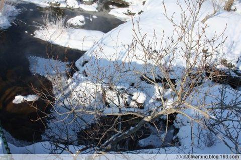 多雪的季节 - 浪漫满屋 - 浪漫满屋的博客