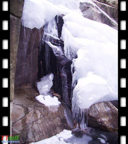 亲吻你,泰山的雪(21日星期六户外群泰山行) - 寒文 - 虎狼兄弟连寒文欢迎您
