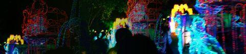 去圆明新园看元宵灯展 - 张中定 - 张中定的博客