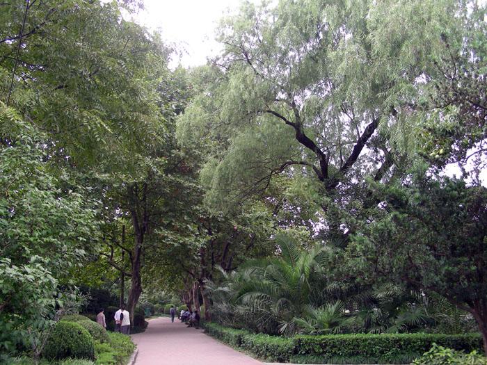 (原创)宋墓与闸北公园 - 语溪子 - 语溪子的博客