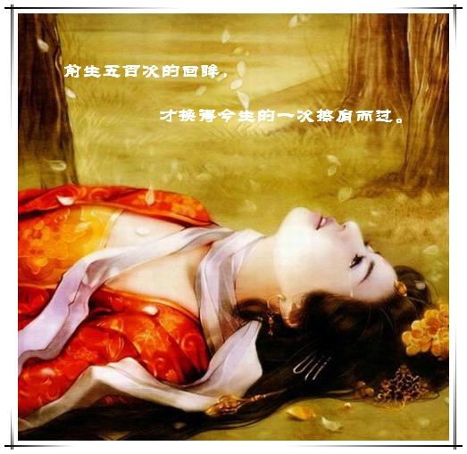 五百年的情缘 - 梅雪蝶梦 - 风住尘香·北阁
