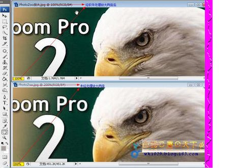 图片无损放大利器 PhotoZoom Pro 2.3.2绿色汉化版(附注册机)【吾之归来第四弹】 - wk1029 - 白羽⊙墨⊙天下ψ