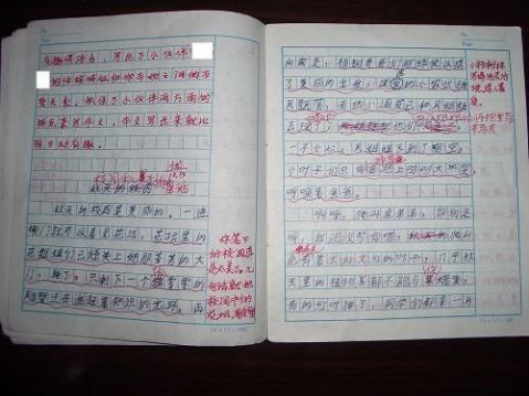 看看龙老师是如何批作文的 - zhuhuasohu - 汩汩的博客